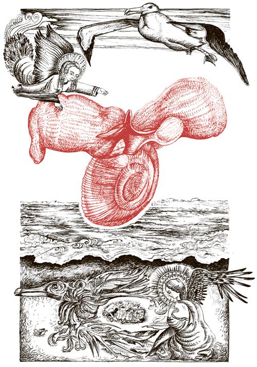Книга о самых невообразимых животных. Бестиарий XXI века