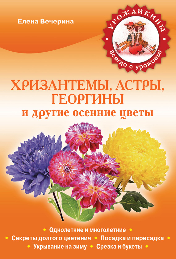 Картинки и названия всех осенних цветов