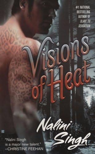 Singh Nalini - Visions of Heat