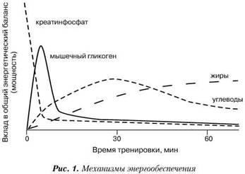 Фармакологическая помощь спортсмену кулиненков пептиды николаев