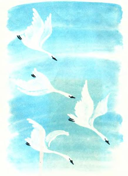 картинки для детей гуси лебеди