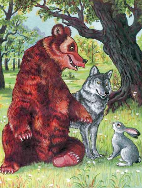 Кот лиса волк медведь