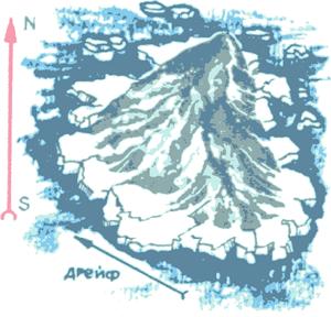 Белые призраки Арктики