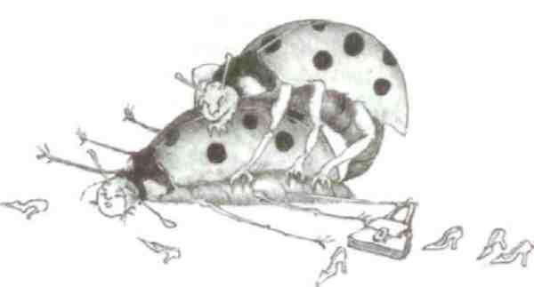 Секс майских жуков