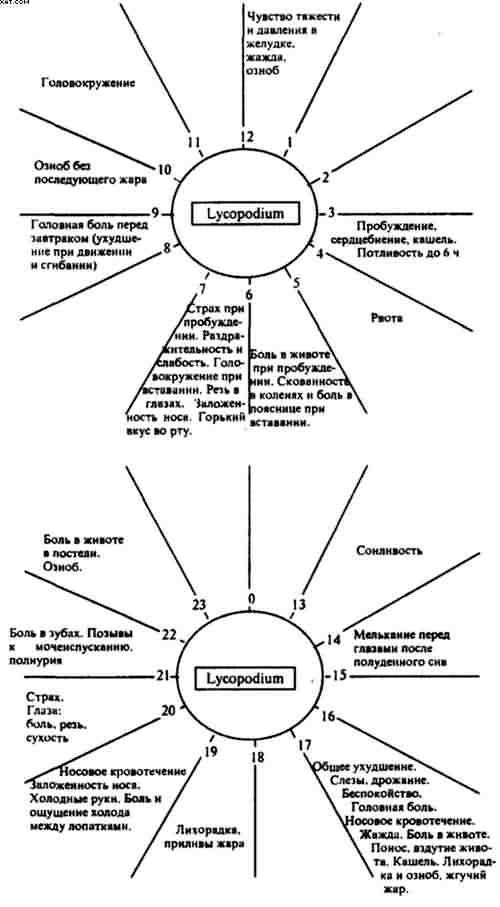 Гомосексуализм в гомеопатии