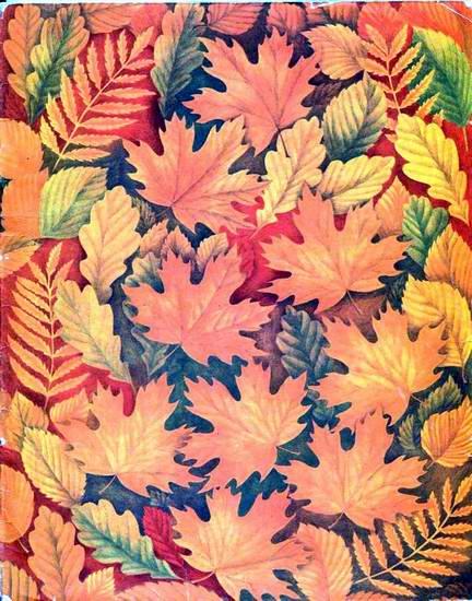 Семь разноцветных сказок