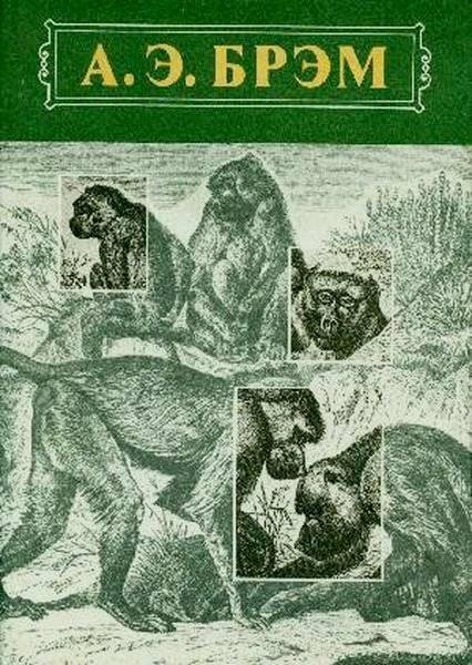 Жизнь животных Том I Млекопитающие