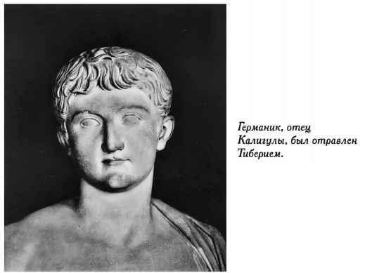 Калигула засунули руку