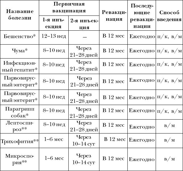 размеры пениса у догов