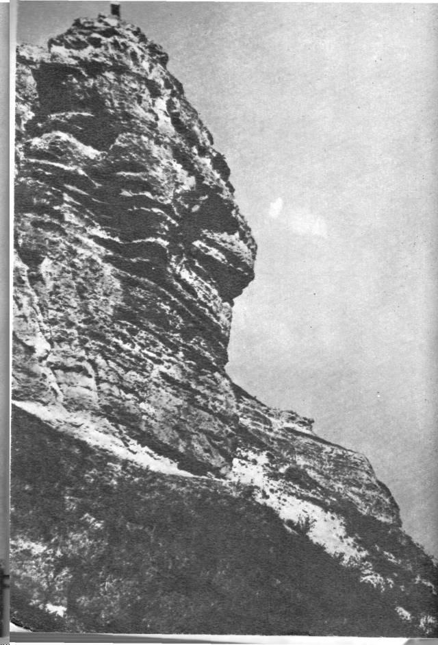 Из царства Атея в Неаполь Скифский