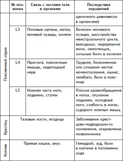 L – поясничный отдел