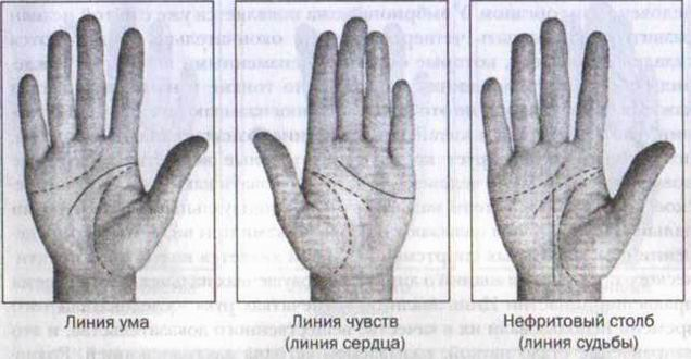 фото рука ведет