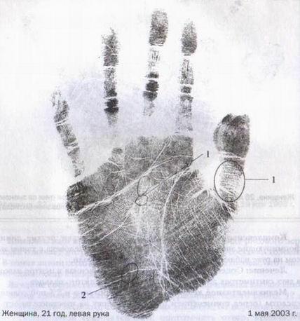 точки акупунктуры на руке человека для улучшения потенции