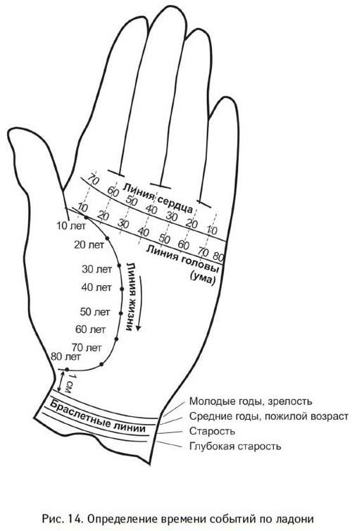 гороскоп овен 5 11 октября