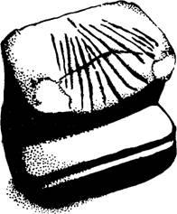 Масонский Завет. Наследие Хирама