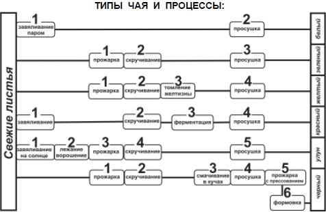 Типы чая и процессы