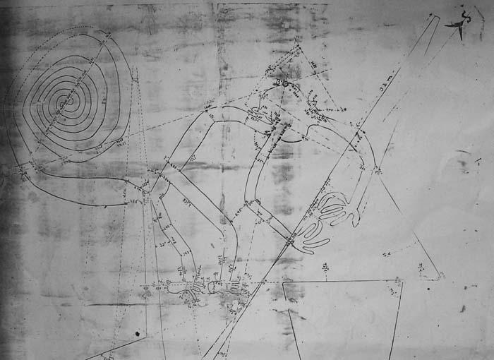 Наска: гигантские рисунки на полях