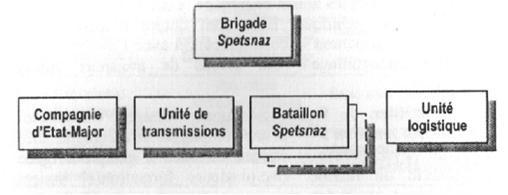Войска специального назначения Организации Варшавского договора (1917-2000)
