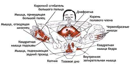 eblya-speredi