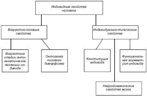 Общая схема индивидных свойств