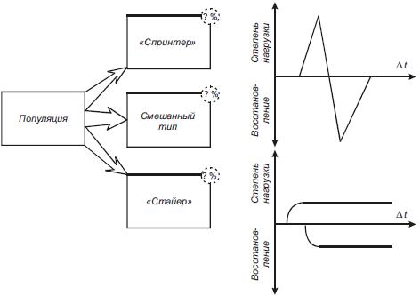 models for dynamic