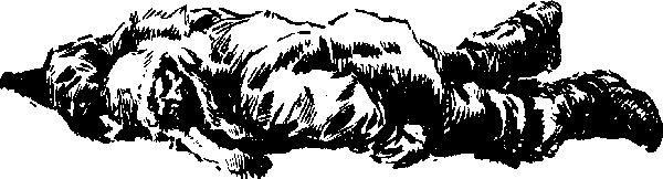 «Лахтак»