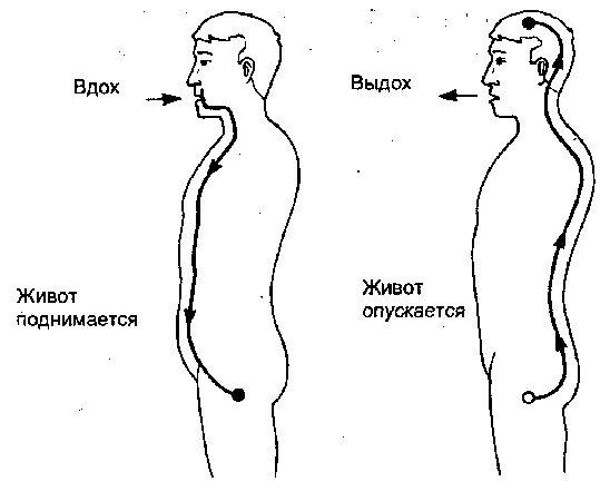 Направление сексуальных потоков