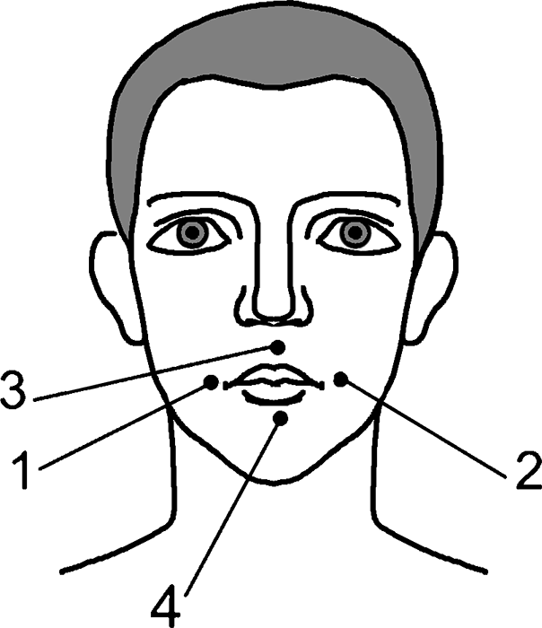 Лечебные свойства калины красной при гипертонии