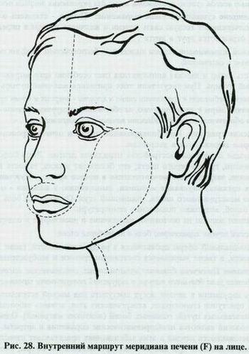 Искусство диагностики по лицу атлас