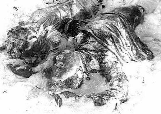 Смерть, идущая по следу… (интернет-версия)