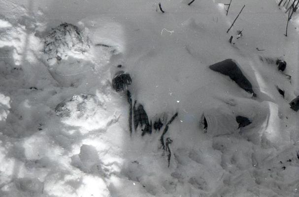 Фотография тел погибших