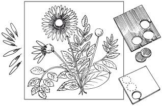 Поделки из природных материалов