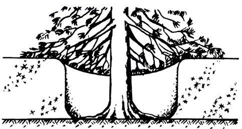своеобразный шалаш-конус