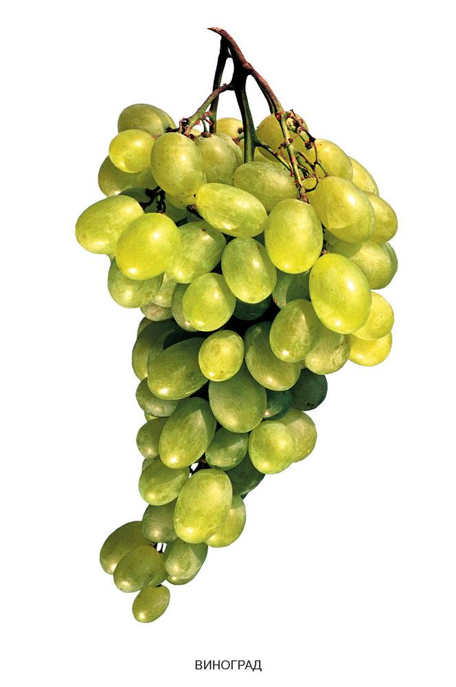 На ягодах винограда темные пятна - 8f165