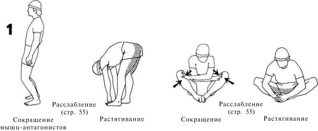 боб андерсон растяжка для поддержания гибкости мышц и суставов скачать