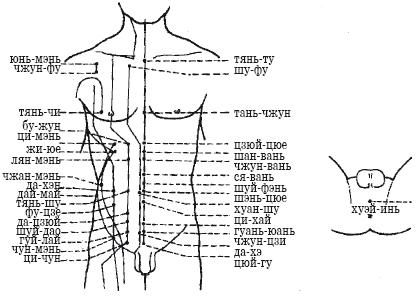Схема точек груди и живота