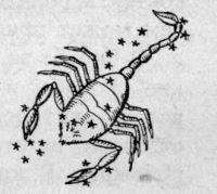 характеристика родившихся под знаком скорпиона