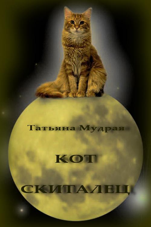 Кот-Скиталец (СИ)