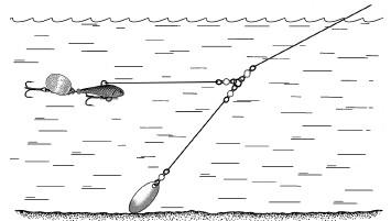 троллинг рыбалка как правильно