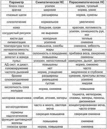 Таблица 1. Вегетативные