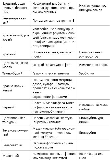 Общий клинический анализ мочи - Полный справочник анализов и ...