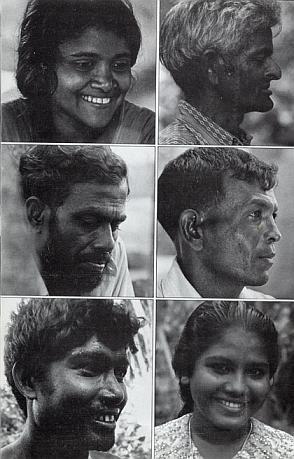 Мальдивская загадка