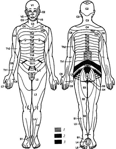 Страпон — Википедия