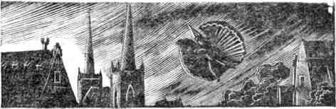 Южное открытие, произведенное летающим человеком, или Французский Дедал