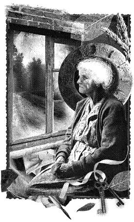 Нова стара баба