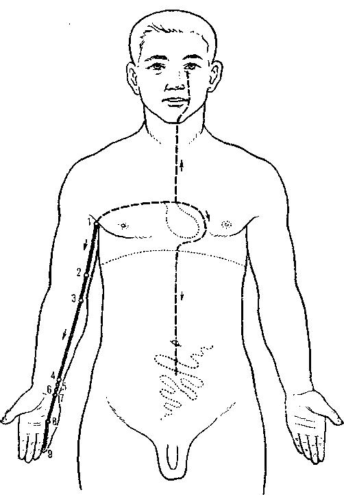 Основы иглорефлексотерапии