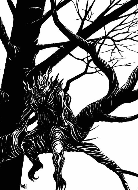 Леса здесь темные