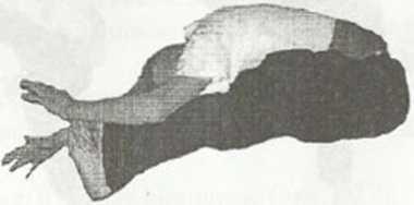Український рукопаш гопак