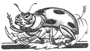Пригоди бджілки Майї
