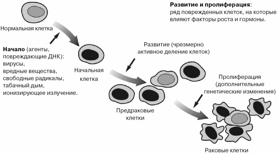 Как нарисовать гигантские соски на гигантской груди, охуенный секс русских студентов